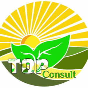 Top Consult_img