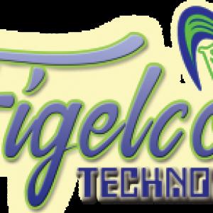 Figelcon Technologies_img