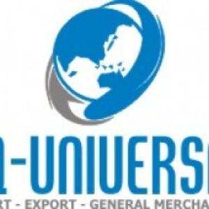 DQ Universal_img