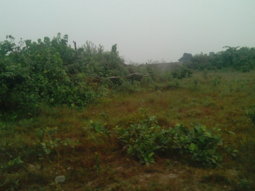 cheap and genuine land ibeju lekki 550k image