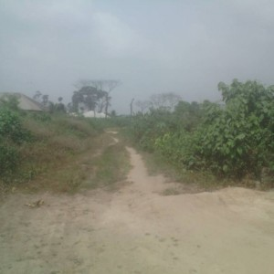 Plots Of Land For Sale At OmagwaRivers State