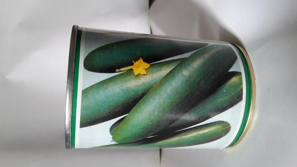 Cucumber Tokyo F1 image