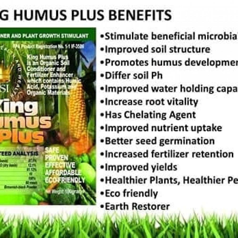 King humus image